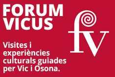 Forum Vicus